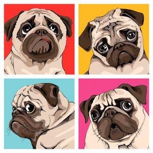 Pug Drawings