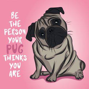 Pug Person