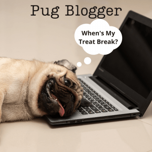 Blogger Copy