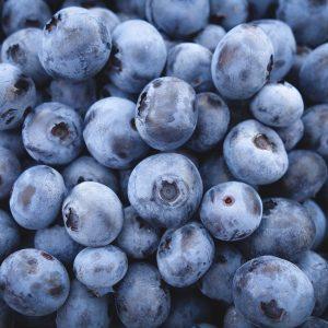 Blueberries Square