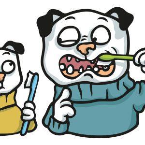 Pugs brushing teeth