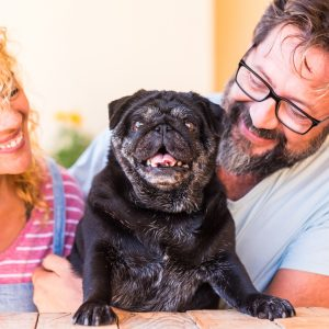 Couple with Old Pug