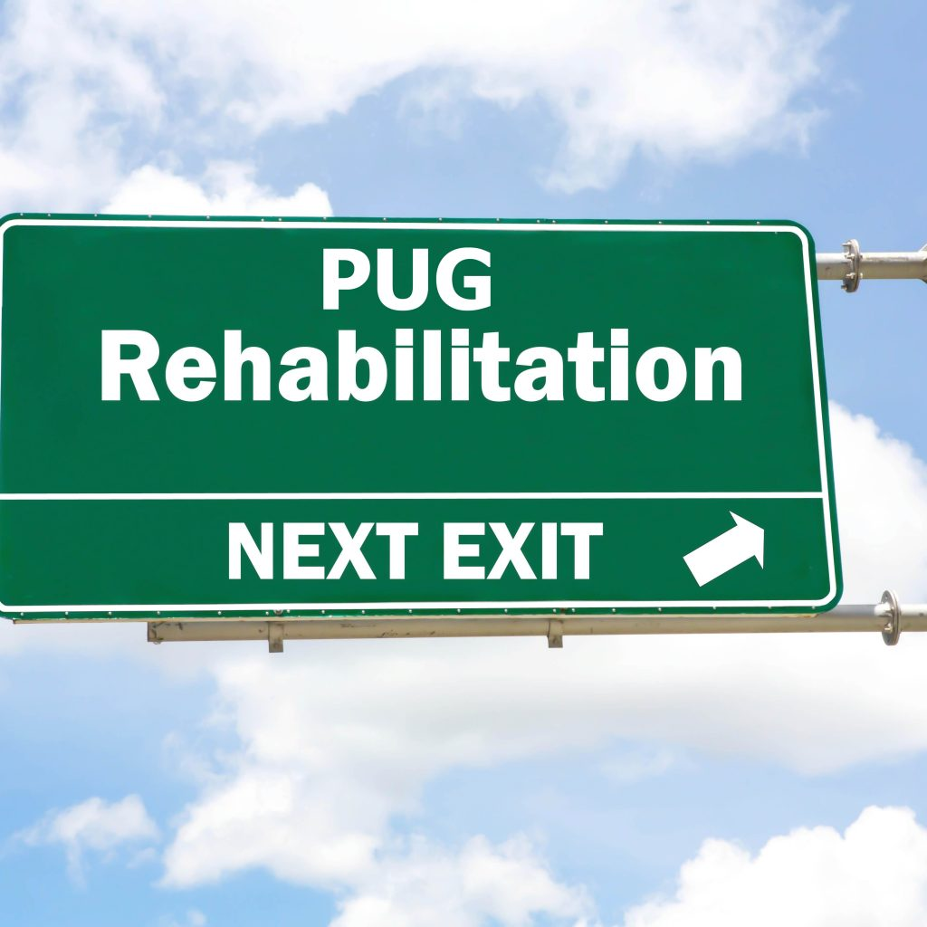 Pug Rehabilitation Final