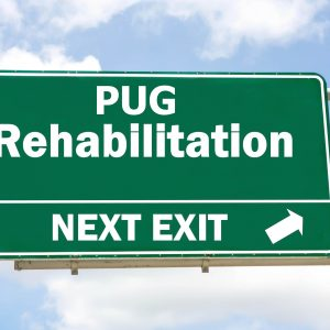 Pug Rehabilitation Final Copy 1