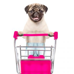 Pug with Shopping Cart