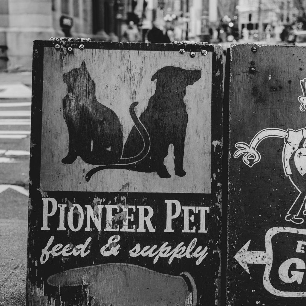 local pet store